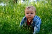 Baby Crawling in Grass