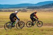 Three bisyclists wearing helmets riding together in rural environment